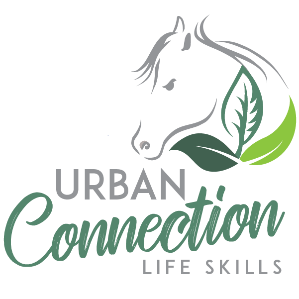 Urban Connection Life Skills logo